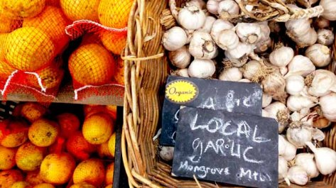 Garlic at Markets