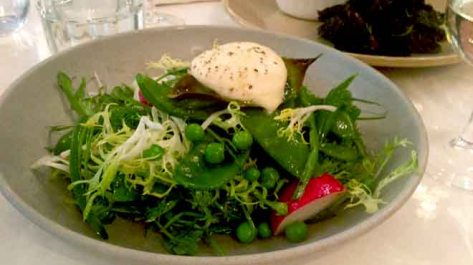 Snow Pea Salad with Runner Beans and Lemon Scented Mozzarella