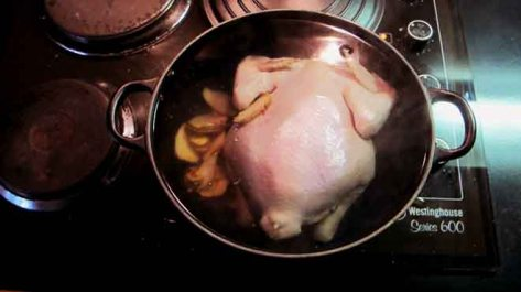 Chicken in the Pot